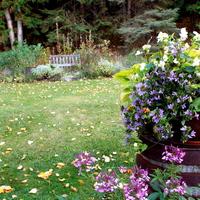 Így lesz a kertje ősszel is szép