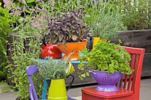 Edények, gumicsizmák, íróasztal, floppylemez és csillár a kertben?