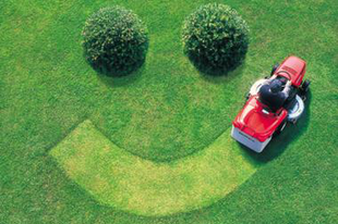 A szomszéd fűje mindig zöldebb? Így lesz az Ön udvarának fűje a legszebb a környéken…