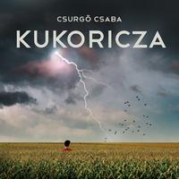 Csurgó Csaba: Kukoricza
