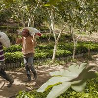 Az igazi fair trade kávé nyomában