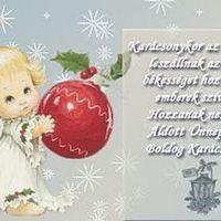 Kellemes karácsonyi ünnepeket kívánok Mindenkinek!