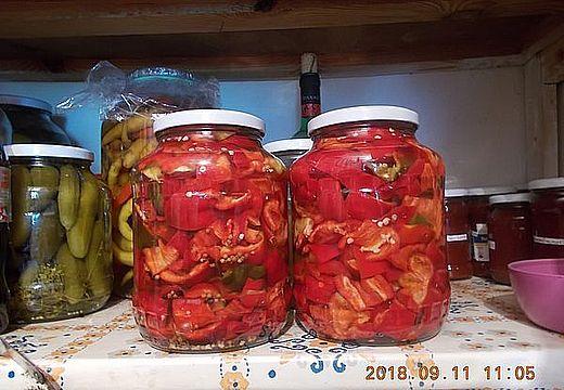 paprika-telre-2018.jpg