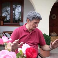 Vida Péter filozófikus bortételeinek randevúja a gasztronómiával