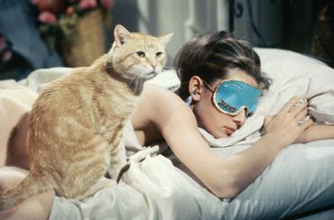 Aludj csak, én álmodom avagy 10 elképesztő dolog az alvással kapcsolatban