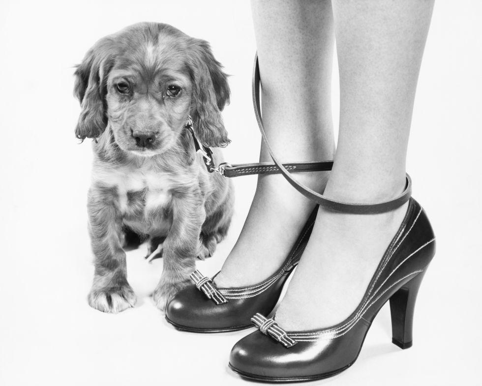 Melyik a cukibb ezen az 1950-es képen, a kutya vagy a masnis, pántos cipellő?
