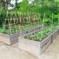Magaságyban való termesztés lényege