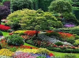 Virágoskert.jpg