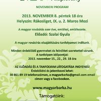 Magyar Bárka novemberi programjai a Marosban - Rovás!