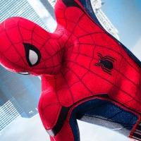 Történelmi áttekintés Pókember filmes megjelenéseiről és jogairól