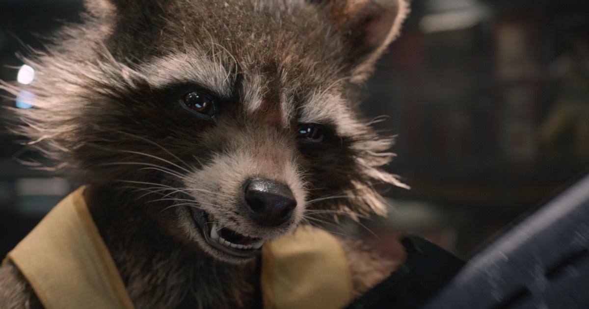 gotg-rocket-raccoon-still.jpg