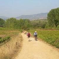 El Camino - csillagösvény önmagunkhoz