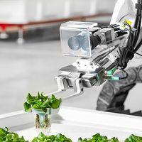 A világ első teljesen automatizált gazdasága