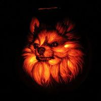 A világ leglátványosabb Halloween tökjei