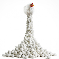 A tojás diadala