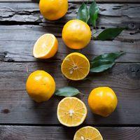 A citrom és 8 tojásos tészták találkozása