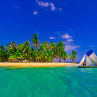 Karibi pesto téli partikra