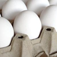 Milyen tojást válasszunk a boltban?