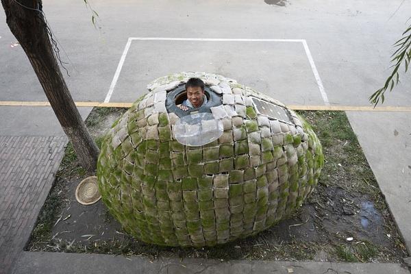 egg-house3.jpg