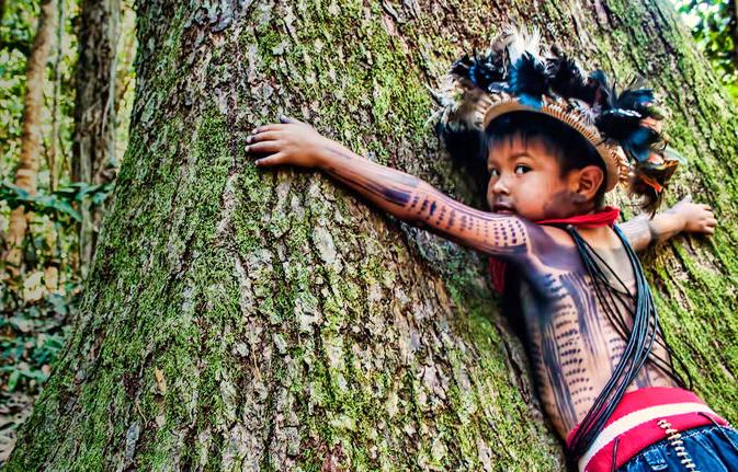paiter_surui_boy_amazon_rainforest_rescue_org.jpg