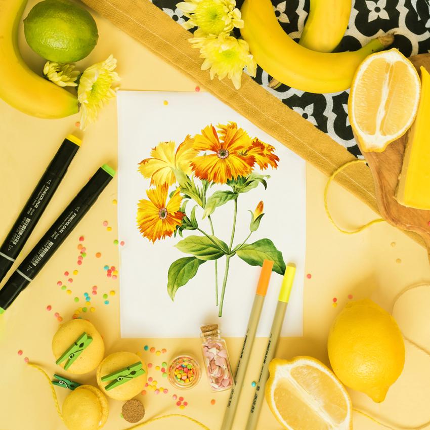 lemon-art01.jpg
