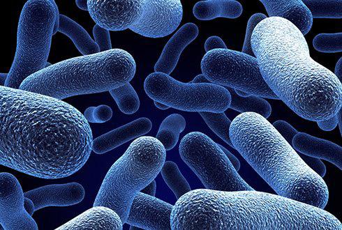 microbes3.jpg