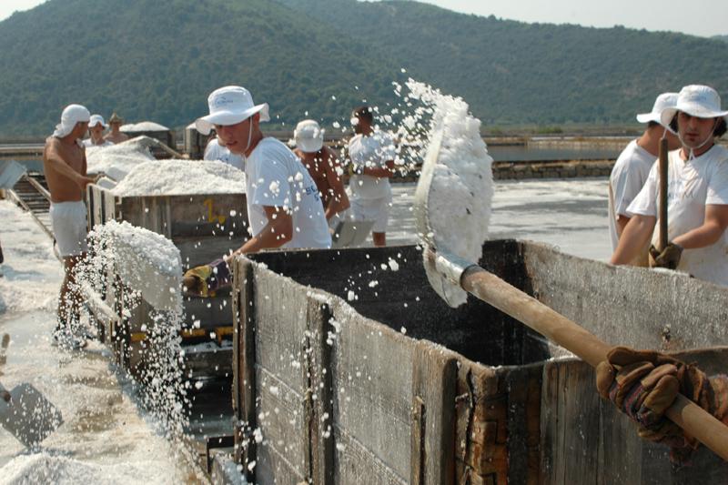 Sea-salt-harvest-Zvonimir-Pandža-Dubr.jpg
