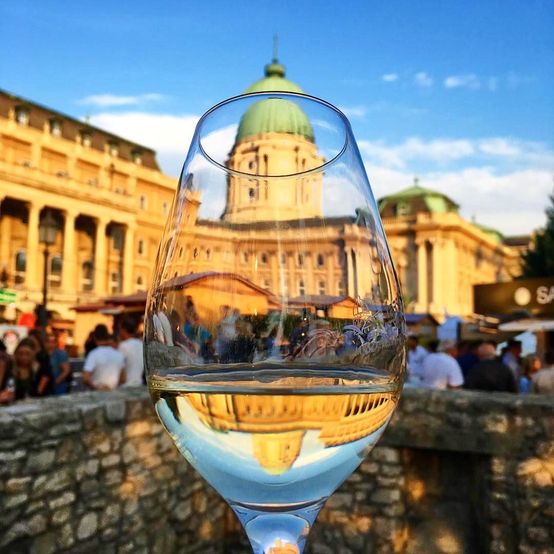 budapest_wine_festival.jpg