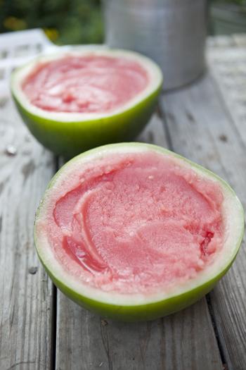 watermelon-lime-sorbet-slices-4_1.jpg