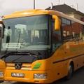 Buszközlekedés:Paposon sem minden papsajt.