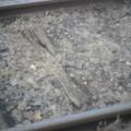 Vasúti utazás Mátészalka- Nyíregyháza viszonylatban