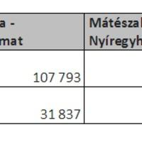 Csaknem 1300 millió forintba kerül évente a Nyíregyháza-Mátészalka-Fehérgyarmat vonatközlekedés!