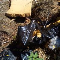 Felszámolták a Rácz kerti illegális hulladéklerakót!