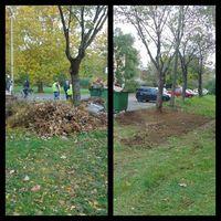 Felszámolták a Rácz kerti illegális hulladéklerakókat!