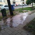 Csőtörés a Bajcsy-Zsilinszky utcán. A kifolyó víz habos és koszos...