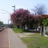 Fogadj örökbe vasúti megállóhelyet! - Eredmény 1.