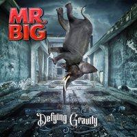 Mr. Big: Defying Gravity (2017)