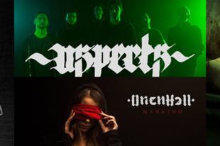 Erős hazai extrém metal buli február 15-én a Dürer Kertben!