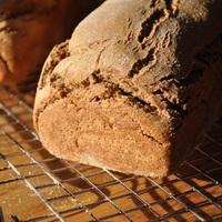 A szárított kovász próbája, egy teljes kiőrlésű rozs kenyér