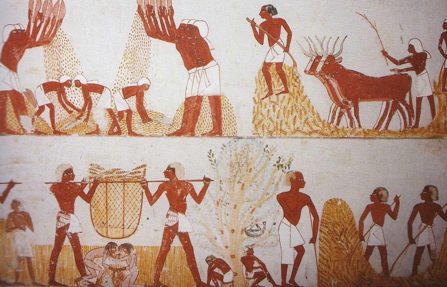 Egyiptomi Birodalom