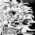 Noise Shaft : Induxion Mental - Arruinados En Veneno review