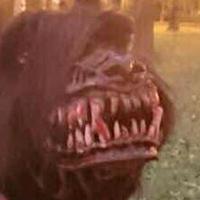 Így lesz vérfarkas a kutyádból