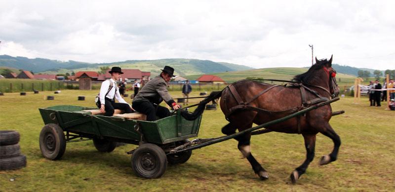 Felvétel a Székely Derbi lovaskocsis hajtóversenyről