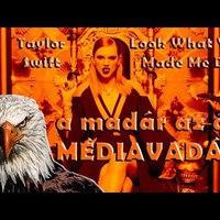 Taylor Swift bizarr esete a kígyókkal   Look What You Made Me Do klipelemzés