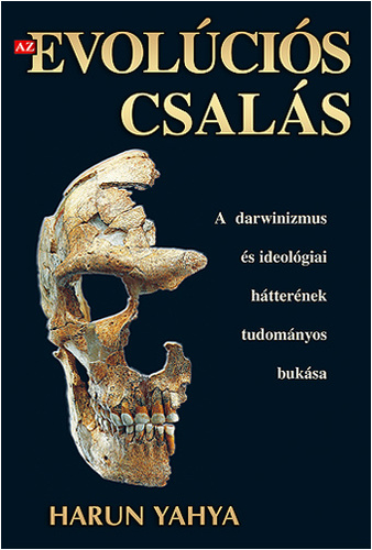 evolucios_csalas00.jpg