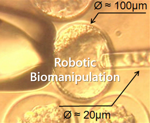 robotic_biomanipulation.png