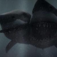 Trash-Fless: 2-Headed Shark Attack (2012)