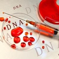 Vérmintából genetikai elemzés a klinikumban