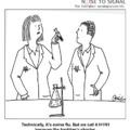 H1N1 Influenza: A komoly és vicces oldal