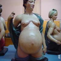 A várandós test belülről